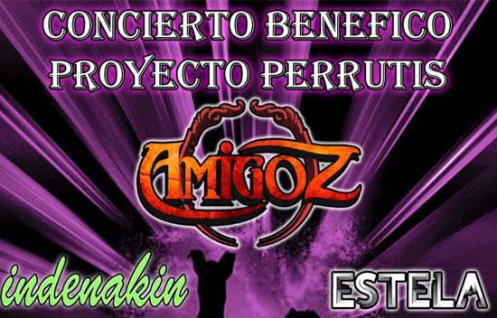 Concierto Benefico Proyecto Perrutis 2017